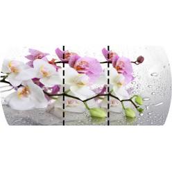 Стол Орхидея раскладной